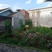 Tanah Kavling Dijember Murah Tengah Kota (27871855) di Kab. Jember