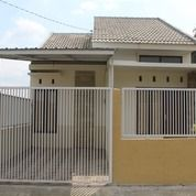 Rumah Murah Jember Asri Dan Nyaman (27872167) di Kab. Jember