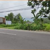 Tanah Matang Bonus Pajak Legalitas SHM 3 Jt-An (27882503) di Kab. Sleman