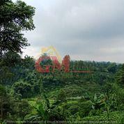 201. VILLA DI LEMBANG - BANDUNG BARAT (27915751) di Kota Bandung