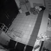 Paket Camera CCTV 16 Channel AHD 2 MP ZUCOM HDD 2TB Online Internet Komplit (Tinggal Pasang) (27917355) di Kota Jakarta Selatan