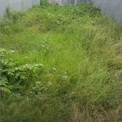 Tanah Ploso Timur Dkt Bronggalan Rangkah Villa Kalijudan Karang Empat Asem (27920119) di Kota Surabaya