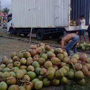 Distributor Kelapa Muda Bekasi (27930163) di Kab. Bekasi