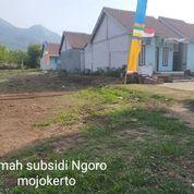 Perumahan Subsidi Bukit Wonosari Ngoro (27949931) di Kab. Mojokerto
