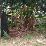Tanah Murah Lokasi Strategis Depok. (27952319) di Kab. Bekasi