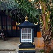 Kandang Bekisar Kotak Beton (27968787) di Kab. Bekasi