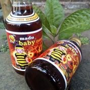 Madu Hutan : Madu Baby Natural (27978075) di Kab. Semarang