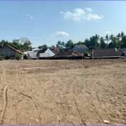 Kavling Matang Gratis Pajak Timur Jalan Cangkringan 2 Jt-An (27988943) di Kab. Sleman