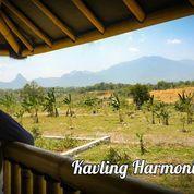 Kavling Mountain View Di Tanjungsari Bogor (28011203) di Kota Jakarta Pusat