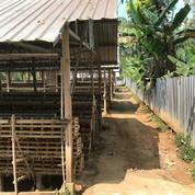 Termurah TANAH DI KLAMPOK SINGOSARI MALANG (28043519) di Kota Malang