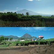 Tanah Kavling Siap Bangun Tanpa Bunga Kota Wisata Batu (Free SHM) (28045735) di Kota Batu