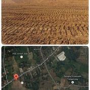 Tanah Luas Siap Bangun Harga Hanya 2jt/M Murah BU Tigaraksa (28046031) di Kab. Tangerang