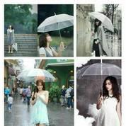 Payung Transparan Bening Umbrella Transparant Korea Japan Best Quality (28053999) di Kota Surakarta