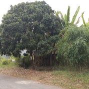 Tanah Kavling Setrasari Bandung Utara (28064507) di Kota Bandung