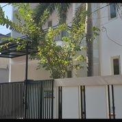 Rumah MURAH 2 Lantai Baru Gress Di Ngagel Timur, Gubeng (28155699) di Kota Surabaya
