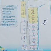 Tanah Siap Bangun Kelapa Warna Tanjung Senang (28163963) di Kota Bandar Lampung