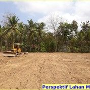 Tanah Kavling Davalia Permai Di Tambun, Diskon 25%: Include Fasum (28165815) di Kab. Bekasi