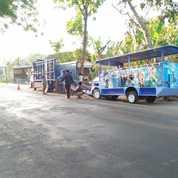 Kereta Mini Kelinci Odong Risma Terbaru (28179095) di Kota Pangkal Pinang