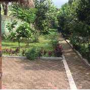 Villa Di Area Pegunungan Yang Sejuk, Dekat Taman Safari | MP33 (28221667) di Kab. Bogor