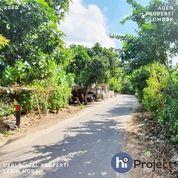 Tanah Kavling Pinggir Jalan Di Jagaraga Kuripan Lombok Barat T471 (28246867) di Kab. Lombok Barat