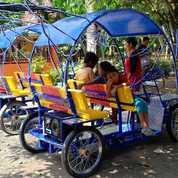 Becak Cinta Angsa Odong Odong Mini Coaster Promo 500K (28250151) di Kab. Brebes