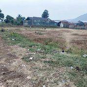 Tanah Kapling Polsek Katapang, Bisa Cicil 12X (28262875) di Kab. Bandung