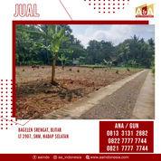 Tanah Sawah Murah Bagelan Srengat Blitar (28295559) di Kota Blitar