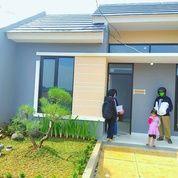 Rumah Kota Bogor 2jt Free All In Strategis Termurah Dekat Stasiun (28319543) di Kota Jakarta Utara