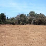Tanah Kavling Murah Wates Kulonprogo : Tempo Cicilan 12 X (28334199) di Kota Yogyakarta