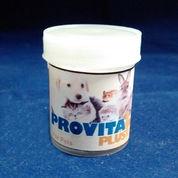 Vitamin Kucing, Anjing, Kelinci, Marmut, Hamster, Musang - Amigos Petshop Makassar (2835685) di Kab. Bantaeng