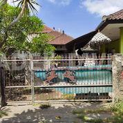 Kos Murah Tukad Petanu Panjer Dkt Pakerisan Panjer (28494475) di Kota Denpasar