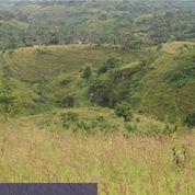 Kavling View Alam Menawan Nusa Penida (2851047) di Kab. Klungkung