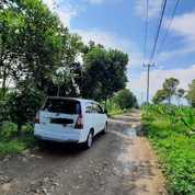 Tanah Cocok Untuk Peternakan Ayam Kambing Sapi Di Purwakarta (28525515) di Kab. Purwakarta
