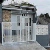 Rumah KPR Tengah Kota Jember (28528891) di Kab. Jember