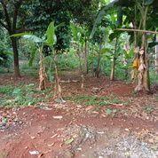 Tanah 2700 Dekat Tol Meruyung Limo Depok (28544279) di Kota Depok