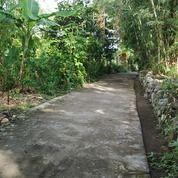 Tanah Pekarangan - Dalam Kampung - Pinggir Jalan (28553447) di Kota Yogyakarta