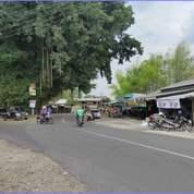 Tanah Matang Cicilan 6X Non Bunga Utara Perum Pertamina Purwomartani (28567275) di Kab. Sleman