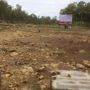 Kavling Murah Area Wates Kulonprogo : Cicilan 12 Non Bunga (28636307) di Kota Yogyakarta
