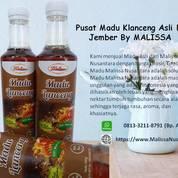 PROMO !! WA : 0813-3211-8791 (Tsel) Grosir Madu Putih Asli Di Jember By MALISSA, (28643091) di Kab. Bojonegoro
