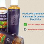 DISKON GILA !! WA : 0813-3211-8791 (Tsel) Supplier Harga Madu Lebah Asli Di Jember By MALISSA, (28662687) di Kab. Bojonegoro