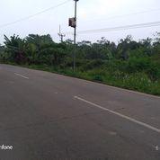 Tanah Murah 800 M Pinggir Jalan Ciruas Walantaka Serang Banten (28681747) di Kota Serang