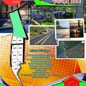 Tanah Kavling Murah Luas 300m2 Di Tabanan (28689283) di Kab. Tabanan