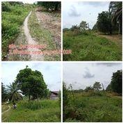 Tanah Mineral Lokasi Garudasakti Akses Mulus (28693119) di Kab. Kampar