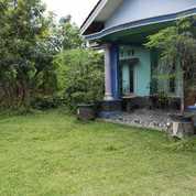 Rumah Di Tenjo Dan Tanah 2.300m2 Dekat Pasar Dan Stasiun Kab Bogor (28700947) di Kab. Bogor