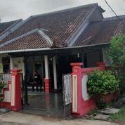 Rumah Di Jimbaran 1Lt, Hoek, Semifurned, Lok. Strategis (28752935) di Kab. Badung
