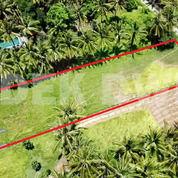 MURAH Tanah Lodtunduh Ubud Dekat Mas Sayan Pengosekan (28759227) di Kab. Gianyar