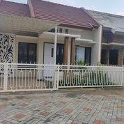 Rumah Premium 41/70 Siap Huni Dekat Bandara Malang (28770479) di Kab. Malang