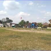 Tanah Matang 120an Utara Kampus UGM Lokasi Terbaik (28776855) di Kab. Sleman