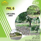 Tanah Jalan Pal 6, Pontianak, Kalimantan Barat (28802991) di Kota Pontianak