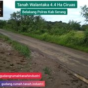 Tanah Ciruas 4.4 Ha Belakang Polres Kab Serang Prop Banten (28874639) di Kab. Serang